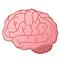 :brains: